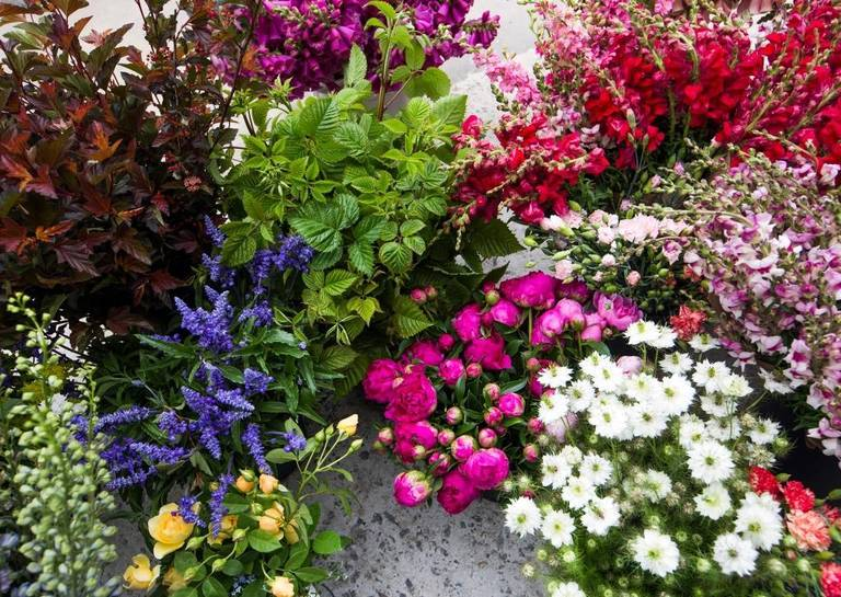 Flowers purchased from Piedmont Wholesale Flowers by Maggie Smith, owner of Pine State Flowers, wait to be loaded into a van during the PWF grand opening Thursday.